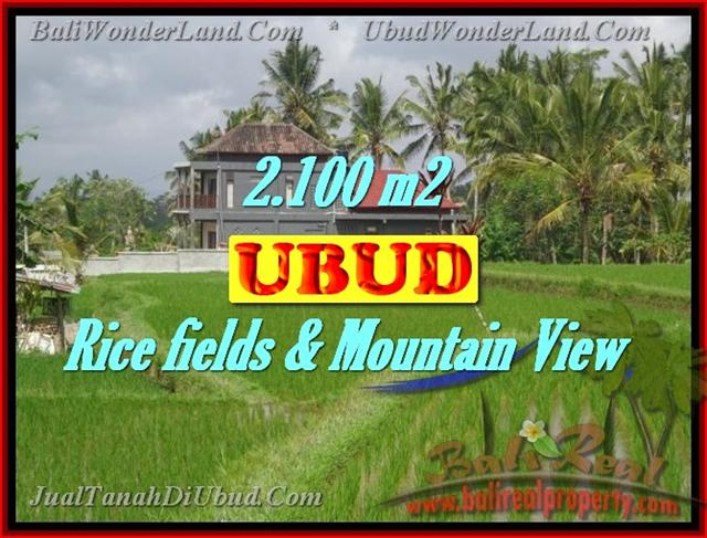Magnificent Land for sale in Bali, Rice fields & Mountain View in Ubud Tegalalang Bali – TJUB423