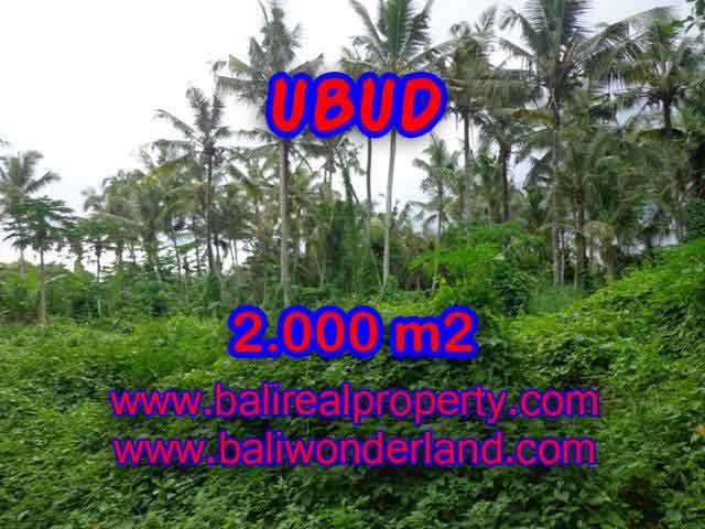 Exceptional Property in Bali, land for sale in Ubud Bali – TJUB397