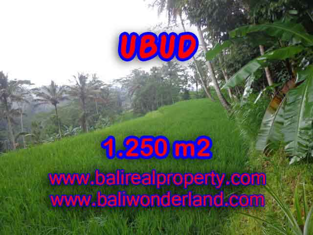 Land for sale in Ubud, Fantastic view in Ubud Tampak siring Bali – TJUB405