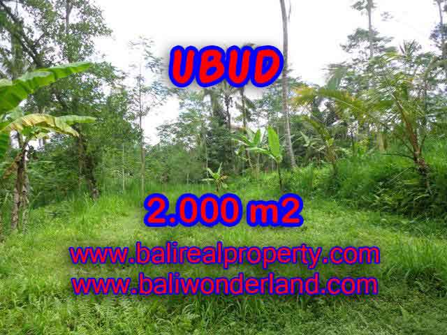 Land in Ubud Bali for sale, nice view in Ubud Tegalalang Bali – TJUB406