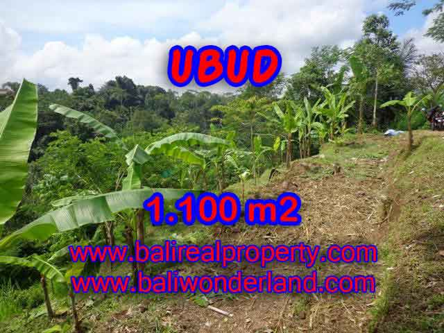 Land in Ubud for sale, Amazing view in Ubud Tegalalang Bali – TJUB407