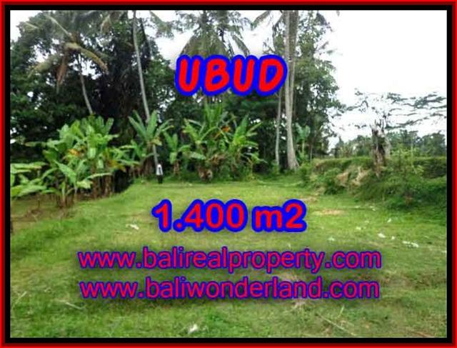 Land for sale in Bali, amazing view in Ubud Tegalalang – TJUB419