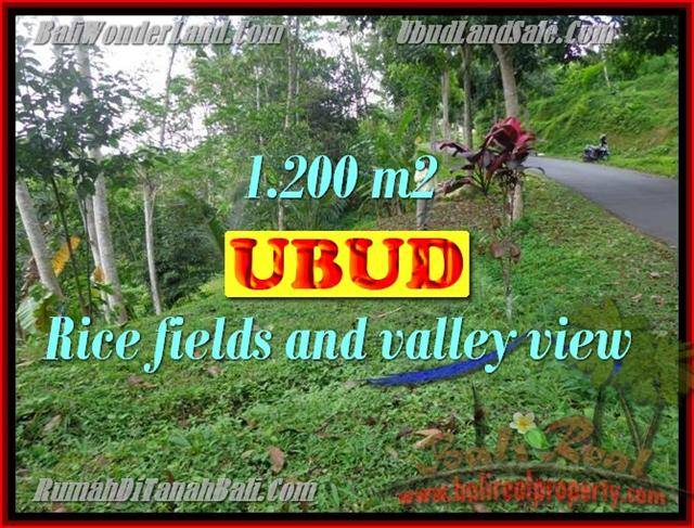 Land in Bali for sale, attractive view in Ubud Tegalalang Bali – TJUB422
