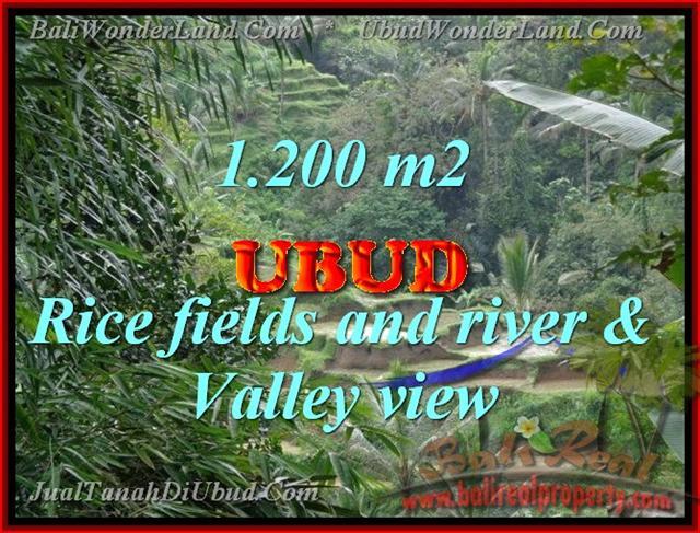 Land for sale in Bali, astonishing view in Ubud Tegalalang Bali – TJUB420