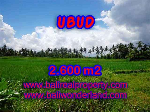 Land for sale in Bali, magnificent view Ubud Bali – TJUB374