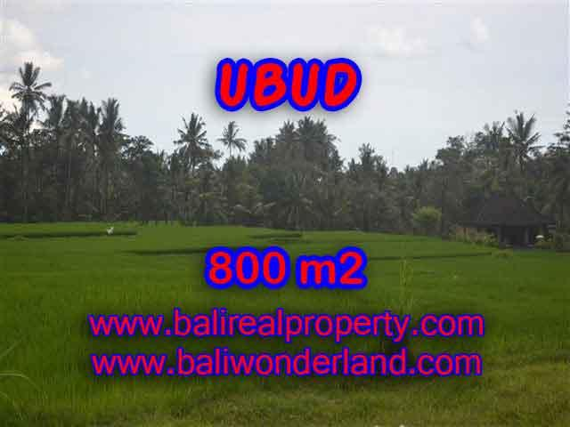 Magnificent Property in Bali for sale, land in Ubud Bali for sale – TJUB396