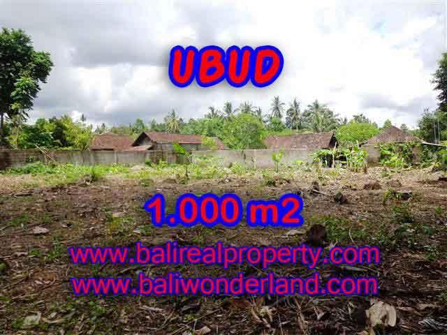 Stunning Land for sale in Bali, green lush view by the creek in Ubud Bali - TJUB373