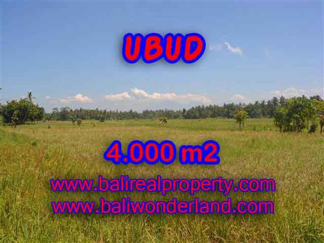 Astounding Property in Bali for sale, Mountain and rice paddy view land in Ubud Bali – TJUB387