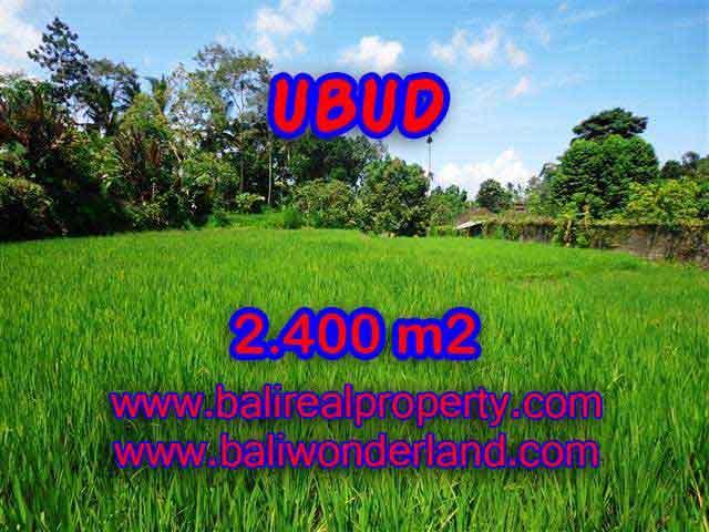 Fantastic Property for sale in Bali, land sale in Ubud Bali – TJUB390