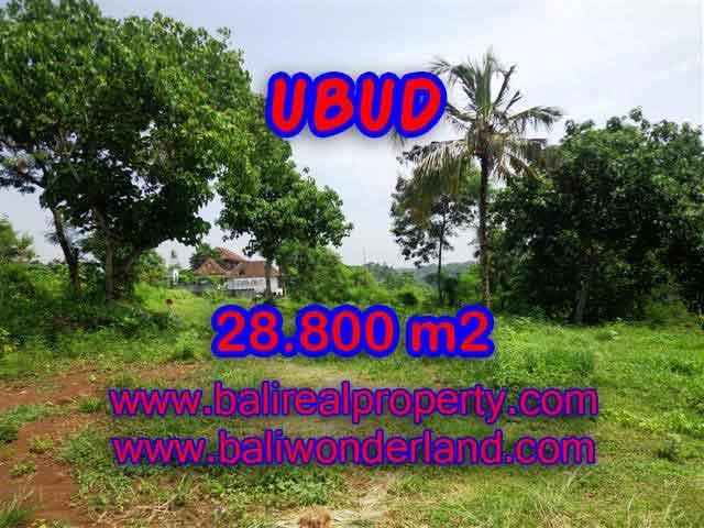 Land in Bali for sale, extraordinary view in Gianyar – TJUB366