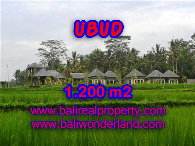 Land for sale in Bali, exotic view in Central Ubud Bali – TJUB365