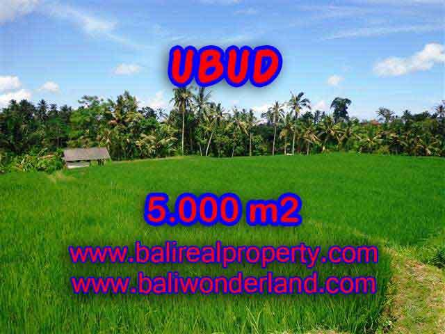 Attractive Property for sale in Bali, land for sale in Ubud – TJUB389