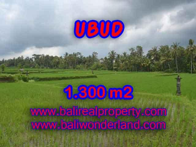 Excellent Property for sale in Bali, land for sale in Ubud Bali  – TJUB394