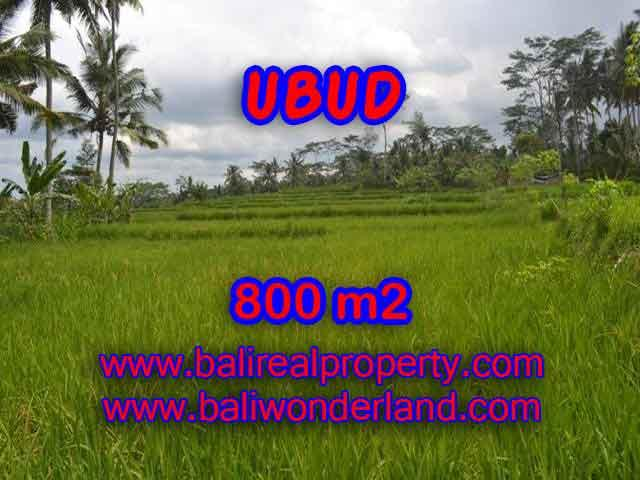 Exotic Property for sale in Bali, LAND FOR SALE IN UBUD Bali – TJUB393