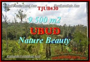 Affordable Ubud Payangan LAND FOR SALE TJUB430