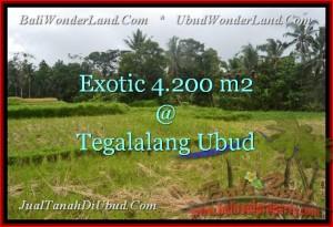 Beautiful PROPERTY 4,200 m2 LAND IN UBUD BALI FOR SALE TJUB461