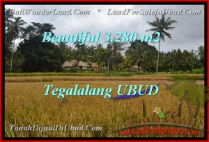 Magnificent 3,280 m2 LAND IN UBUD FOR SALE TJUB463