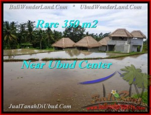 FOR SALE Magnificent LAND IN Ubud Tegalalang TJUB476