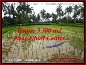 Affordable LAND IN Ubud Tegalalang BALI FOR SALE TJUB477