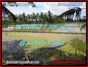 LAND FOR SALE IN Ubud Payangan BALI TJUB475
