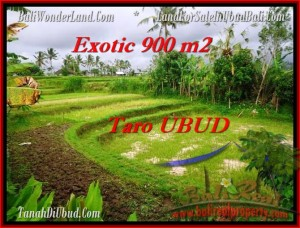 Beautiful 900 m2 LAND IN UBUD BALI FOR SALE TJUB464