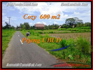 FOR SALE Exotic 600 m2 LAND IN UBUD TJUB465
