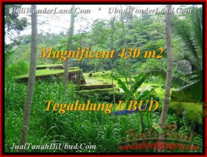 FOR SALE Affordable PROPERTY LAND IN Ubud Payangan BALI TJUB466