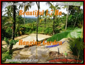 Beautiful LAND SALE IN Ubud Payangan BALI TJUB470
