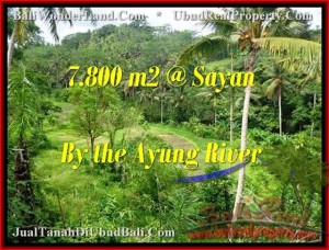 FOR SALE Affordable PROPERTY LAND IN Near Ubud Center BALI TJUB472