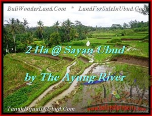 Magnificent PROPERTY 20,000 m2 LAND SALE IN UBUD BALI TJUB473