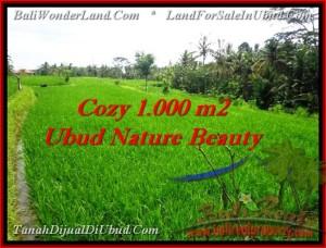 Beautiful LAND FOR SALE IN Ubud Tegalalang BALI TJUB478