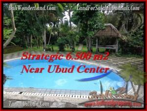 FOR SALE Affordable PROPERTY 6,500 m2 LAND IN UBUD TJUB479