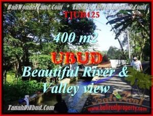 Exotic PROPERTY 400 m2 LAND FOR SALE IN UBUD BALI TJUB425