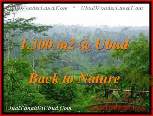 FOR SALE Beautiful PROPERTY LAND IN Ubud Tegalalang BALI TJUB481