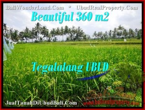 Beautiful LAND IN Ubud Tegalalang BALI FOR SALE TJUB482