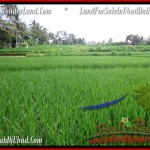 AFFORDABLE LAND IN UBUD FOR SALE