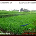LAND IN UBUD FOR SALE by Bali Real Property