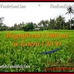 AFFORDABLE LAND FOR SALE IN UBUD BALI