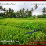 Property Investment in Bali LAND IN UBUD FOR SALE