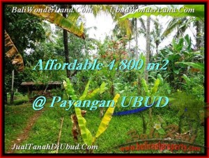 4,800 m2 LAND FOR SALE IN UBUD TJUB486