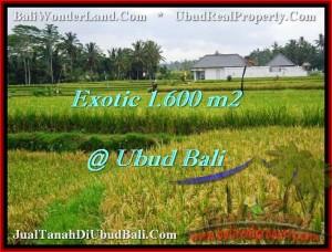 Exotic UBUD 1,600 m2 LAND FOR SALE TJUB487