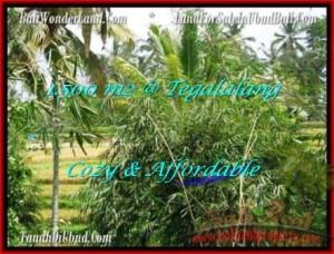 Affordable PROPERTY 1,500 m2 LAND FOR SALE IN UBUD BALI TJUB489