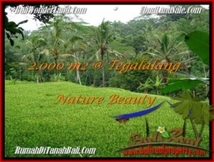 Exotic PROPERTY 2,000 m2 LAND IN UBUD BALI FOR SALE TJUB490
