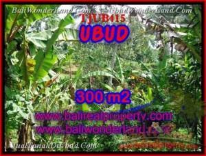 Magnificent LAND FOR SALE IN Sentral Ubud BALI TJUB415
