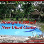 Exotic PROPERTY 6,500 m2 LAND FOR SALE IN Ubud Tegalalang TJUB479