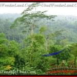 Beautiful PROPERTY UBUD LAND FOR SALE TJUB481