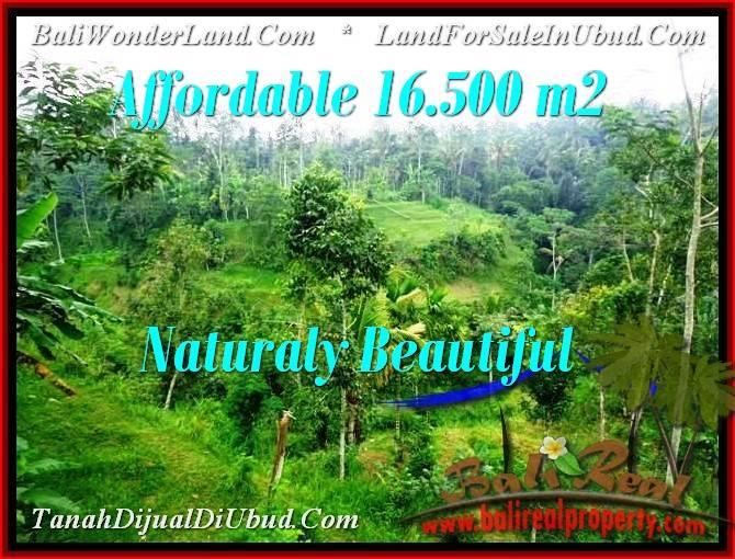 LAND SALE IN Ubud Tampak Siring TJUB494