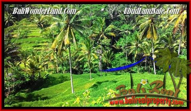 Exotic LAND FOR SALE IN Ubud Tegalalang BALI TJUB496