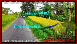 Magnificent LAND IN Ubud Tegalalang BALI FOR SALE TJUB497