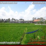 Affordable UBUD 1.000 m2 LAND FOR SALE TJUB445